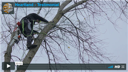 Watch the testimonial video